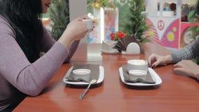 Två flickor dricker kaffe och talar i ett kafé stock video