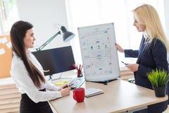 Två flickor i kontoret som diskuterar projektet på ett magnetiskt bräde arkivbilder