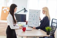 Två flickor i kontoret som diskuterar projektet på ett magnetiskt bräde royaltyfria bilder