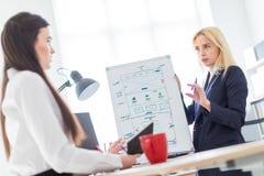 Två flickor i kontoret som diskuterar projektet på ett magnetiskt bräde arkivbild