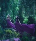 Två flickvänner, en blondin och en brunett, rymmer händer Härlig blomningträdgård för bakgrund Prinsessorna är royaltyfria bilder