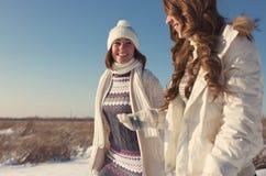 Två flickvänner har gyckel på den härliga vinterdagen Arkivbild