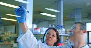 Två forskare som diskuterar över exponeringsglasbrädet 4k lager videofilmer