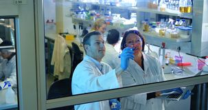 Två forskare som diskuterar över exponeringsglasbrädet 4k arkivfilmer