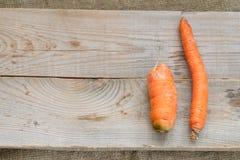 Två fula morötter: tunna krokigt och små ligger på gråa träplankor på säckväv royaltyfri fotografi