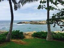 Två gömma i handflatan Oahu Arkivfoto