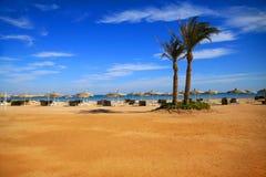 Två gömma i handflatan på stranden royaltyfria bilder
