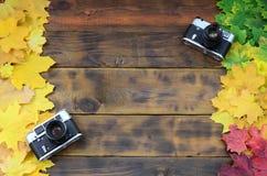 Två gamla kameror bland en uppsättning av att gulna stupade höstsidor på en bakgrundsyttersida av naturliga träbräden av coloen f Royaltyfri Foto