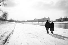 Två gamla människor vinter Arkivfoto