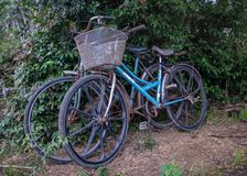 Två gamla Rusty Bicycles Royaltyfri Fotografi