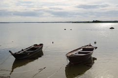 Två gamla träekor vid kusten Royaltyfri Bild