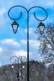 Två gataljus i parkerar på vinterdag royaltyfri fotografi