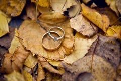Två gifta sig guld- cirklar Arkivfoto