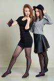 Två gladlynta lyckliga flickaflickvänner som fotograferas på telefonen, självtelefon royaltyfri fotografi