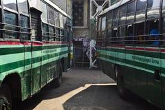 Två gröna bussar på bussstationen arkivbild