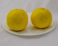 Två grapefrukter på en platta Royaltyfri Foto