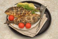 Tv? grillad doradafisk royaltyfria bilder