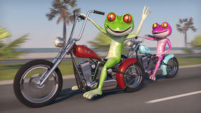 Två grodor som rider motorcyklar Royaltyfri Fotografi
