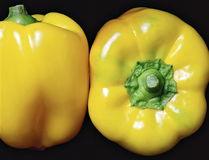 Två gula spanska peppar på den svarta bakgrunden royaltyfri foto