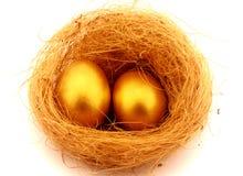 Två guld- ägg arkivfoto