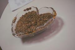 Två guld- cirklar på bröllopet Royaltyfri Fotografi