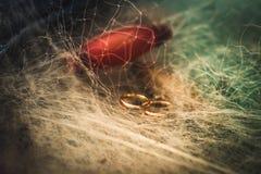 Två guld- vigselringar tilltrasslade in förtjänar Royaltyfria Bilder