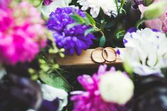 Två guldbröllopcirklar isolerade bakgrundsbegrepp Arkivfoton