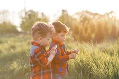 Två gulliga broderpojketweens som har den roliga yttersidan på solnedgången i landet Arkivbild