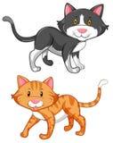 Två gulliga katter på vit bakgrund vektor illustrationer