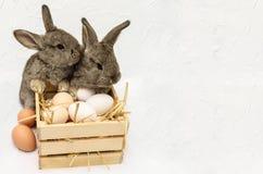 Två gulliga lilla easter kaniner med träasken som är full av easter eg. Arkivfoto
