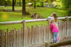 Två gulliga lilla systrar som håller ögonen på djur i zoo på varm och solig sommardag Barn som håller ögonen på zoodjur stå vid f Royaltyfria Foton