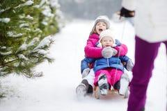 Två gulliga lilla systrar som tycker om sleight, rider med deras moder Arkivfoton