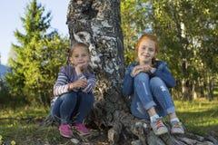 Två gulliga små flickor som sitter nära björk Gå royaltyfri fotografi