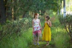 Två gulliga små flickor som talar i parkera Gå royaltyfri fotografi