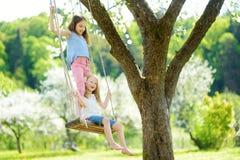 Två gulliga systrar som har gyckel på en gunga, i att blomstra den gamla trädgården för äppleträd utomhus på solig vårdag arkivbilder