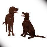 Två gulliga vektorhundkapplöpning Royaltyfria Bilder