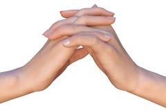 Två händer med flätade samman fingrar Fotografering för Bildbyråer