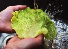 Två händer som tvättar grönsallat i en vask Arkivbilder