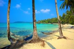 Två hängmattor på en tropisk strand Royaltyfri Fotografi
