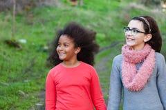 Två härliga flickor som tar en gå Arkivfoto