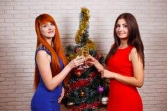 Två härliga kvinnor i afton bär att festa och att klirra glasse royaltyfria foton