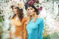 Två härliga kvinnor i sommarfruktträdgården royaltyfria bilder