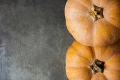 Två härliga Pale Orange Color Pumpkins på mörka Grey Stone Background Autumn Fall Thanksgiving Harvest Royaltyfri Bild