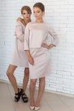 Två härliga sexiga stilfulla lyckliga flickor i den beigea trendiga klänningen som poserar i studio Arkivbild