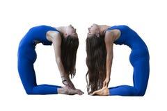 Två härliga unga kvinnor som öva yoga Grupper rymms i parkera royaltyfri bild