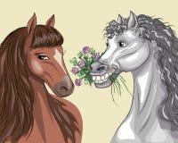 Två hästar Royaltyfri Illustrationer