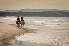 Två hästar med ryttare på den sandiga stranden Arkivbilder