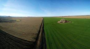 Två höstfält arkivbilder