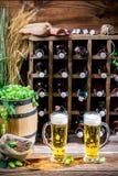 Två halva liter av hemlagat öl Fotografering för Bildbyråer
