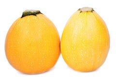 Två hela gula zucchinier Färgrika och healthful mogna zucchinier på en vit bakgrund En tropisk orange zucchini arkivfoton